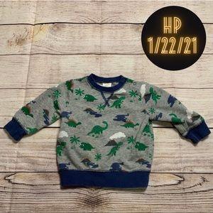 Gymboree Dinosaur Sweatshirt